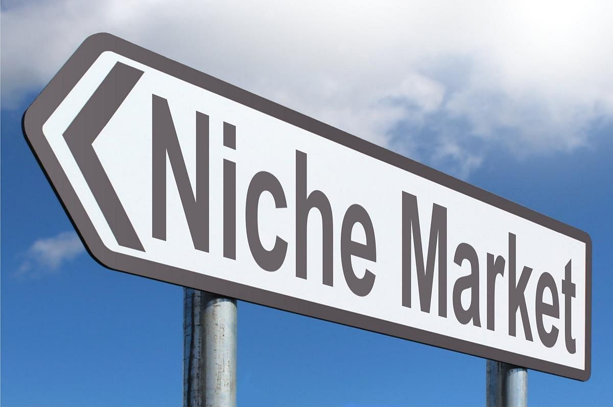 What SEO strategy to follow when your market is niche?