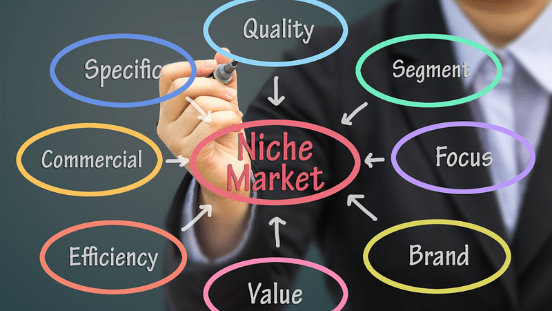 Selecting niche of website