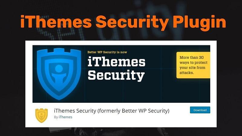 WordPress security theme