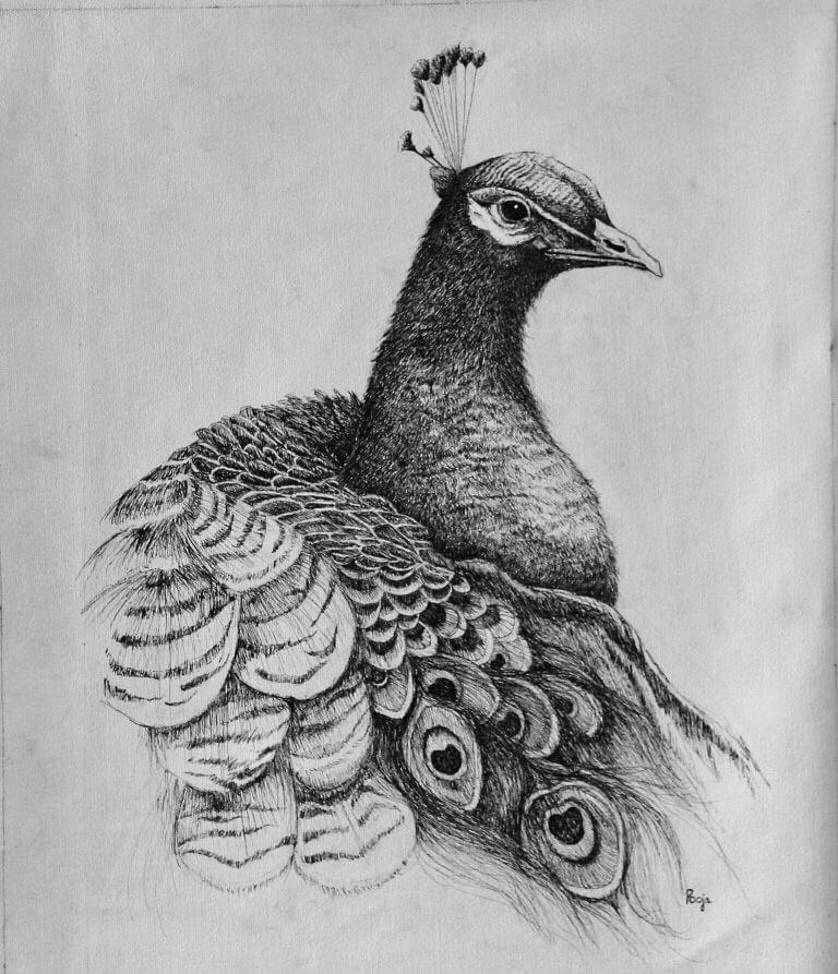 Artis: Pooja Jain