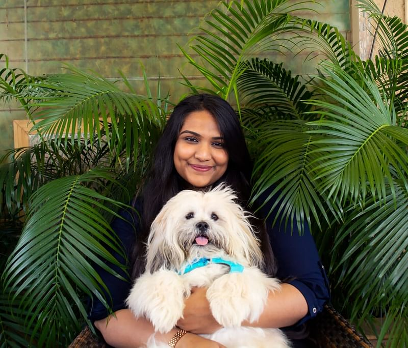 Pet care brand Wiggles in the talks to raise $3 million from investors