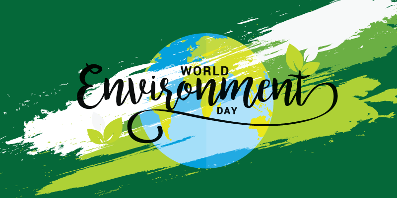 This World Environment Day, here's a closer look at startups