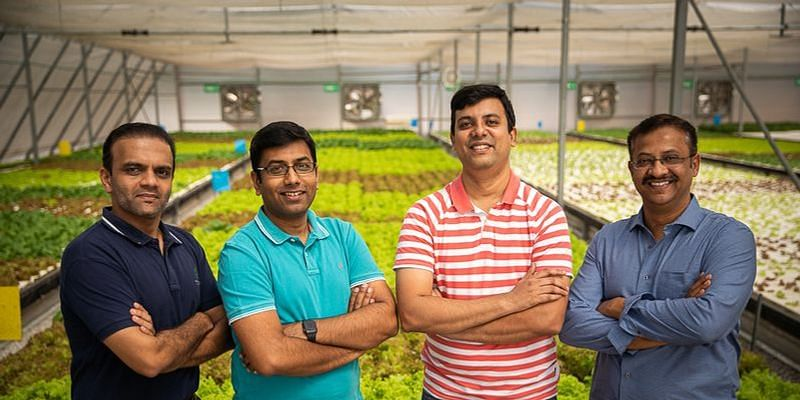 How four friends built a successful greenhouse farming startup from a Chikmagalur coffee estate