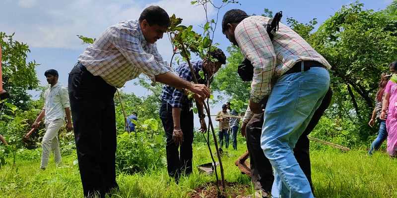 CERE plantation drive