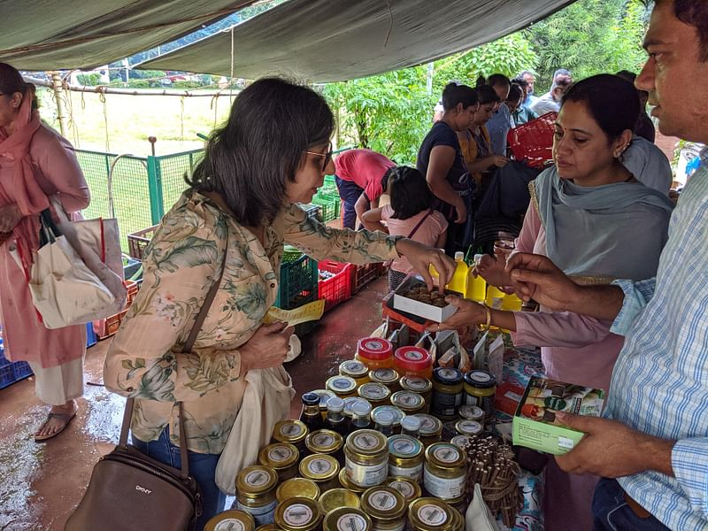 Consumers tasting products