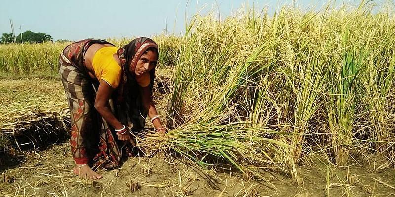 women farmers