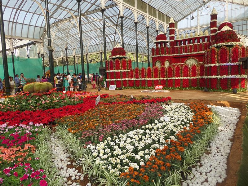 3d779647897f  Photo Sparks  Creativity at the Lalbagh Flower Show!