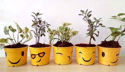 PatPai plants with emotion. :-)