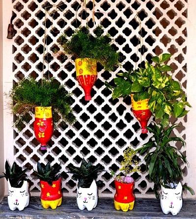 Scrapshala planters