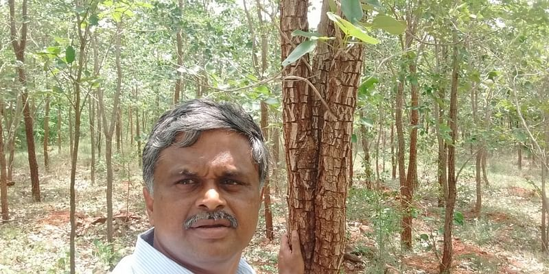 Meet The Engineer Who Quit His Job And Planted Over 40 000