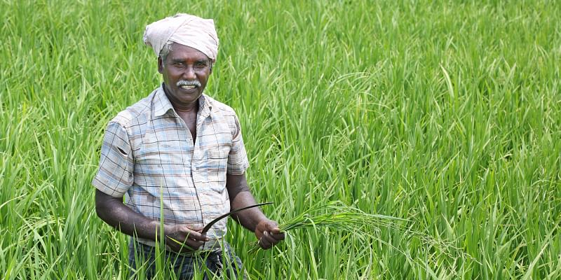 Image result for farmers in india