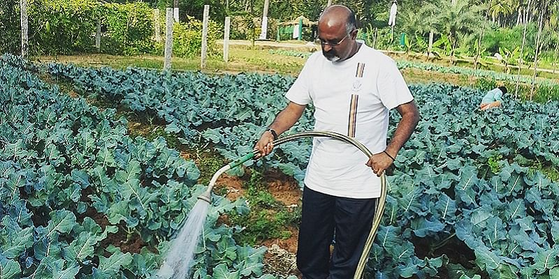 The organic farming concept is gaining ground rapidly in India