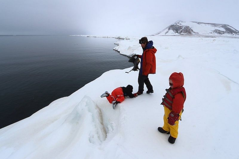 Open water absorbs sunlight, leading to dark skies over the polynya. Bretwood with his kids