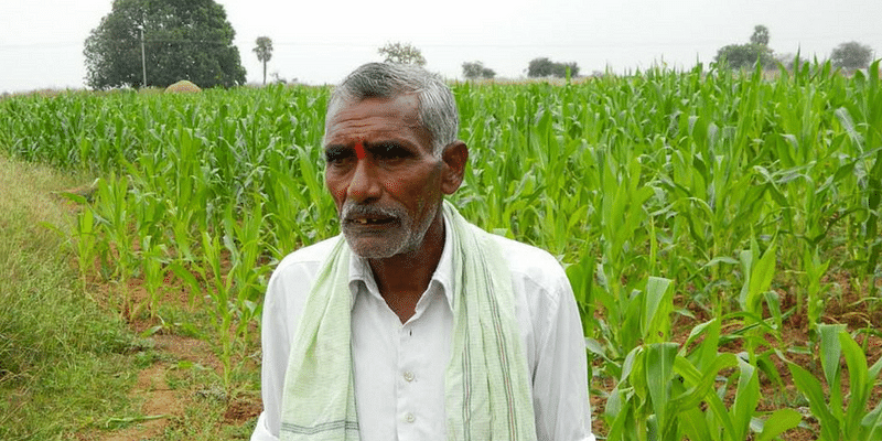 Farmers from this Telangana village make it rich with