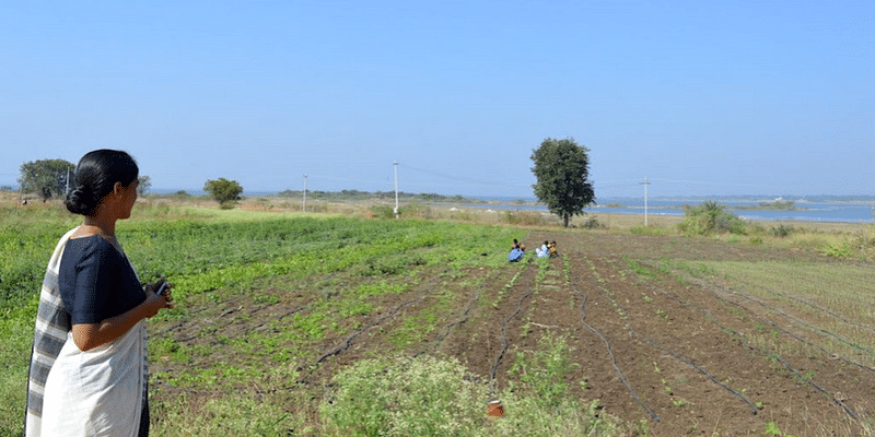 How Telangana farmers are turning barren land into productive farms