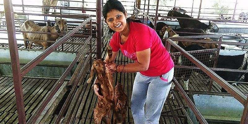 Quitting Her Job As Fashion Designer This Girl Is Now Earning In Lakhs Through Goat Rearing