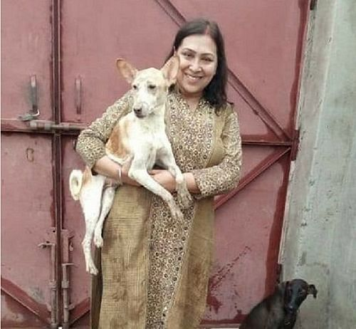 In a dog-eat-dog world, this Agra woman prioritises animal welfare