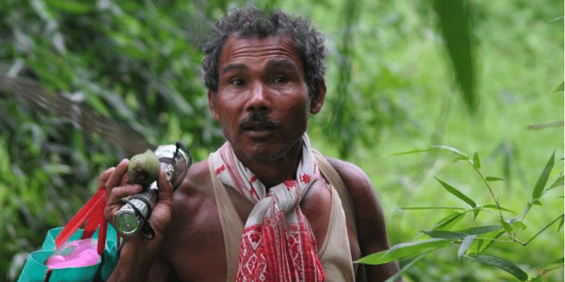 indian man single handedly plants forest