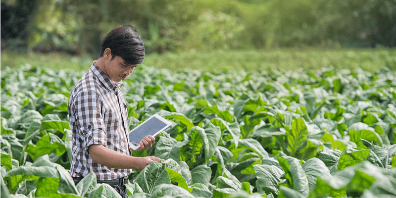 The digital revolution sweeping the agriculture sector in
