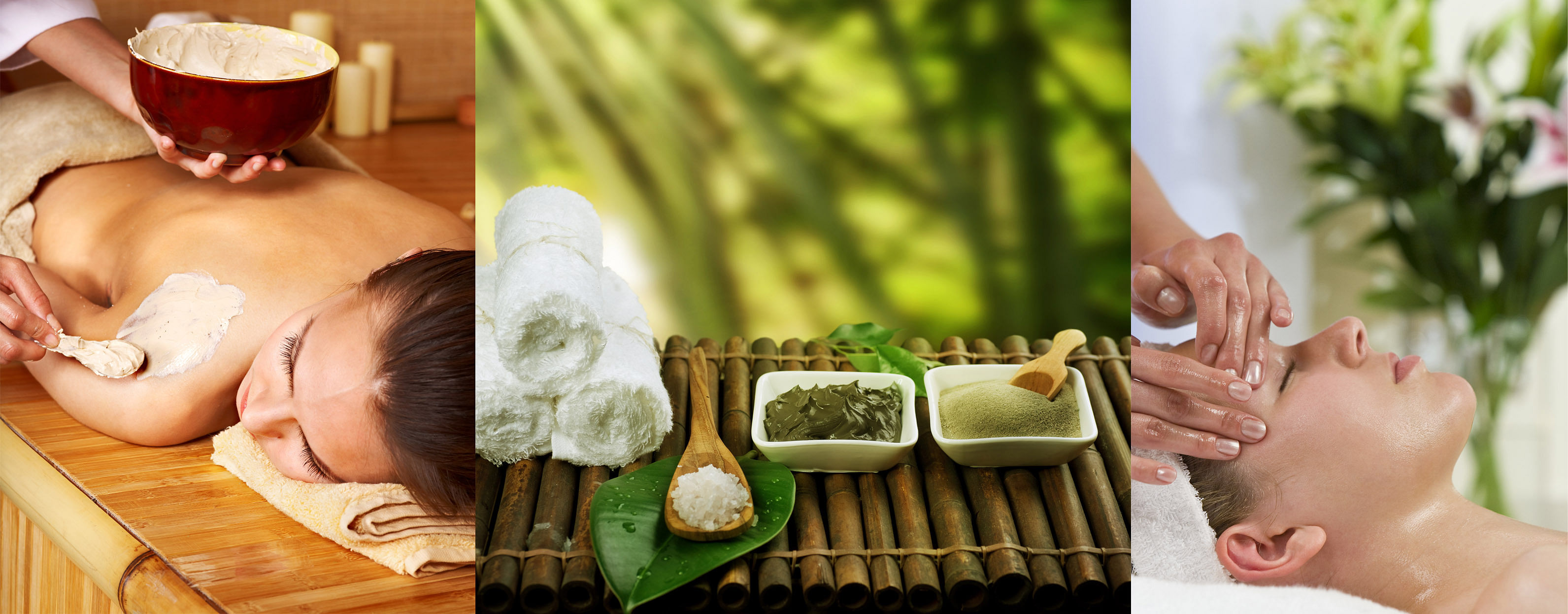 which are the best naturopathy colleges in bangalore