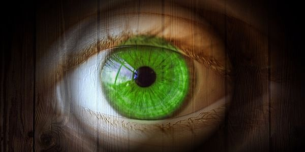 Most jobs today require computer work where you have to stare for long periods of time at the screen. This may add extreme strain to the eyes, normally known as CVS/computer vision syndrome.