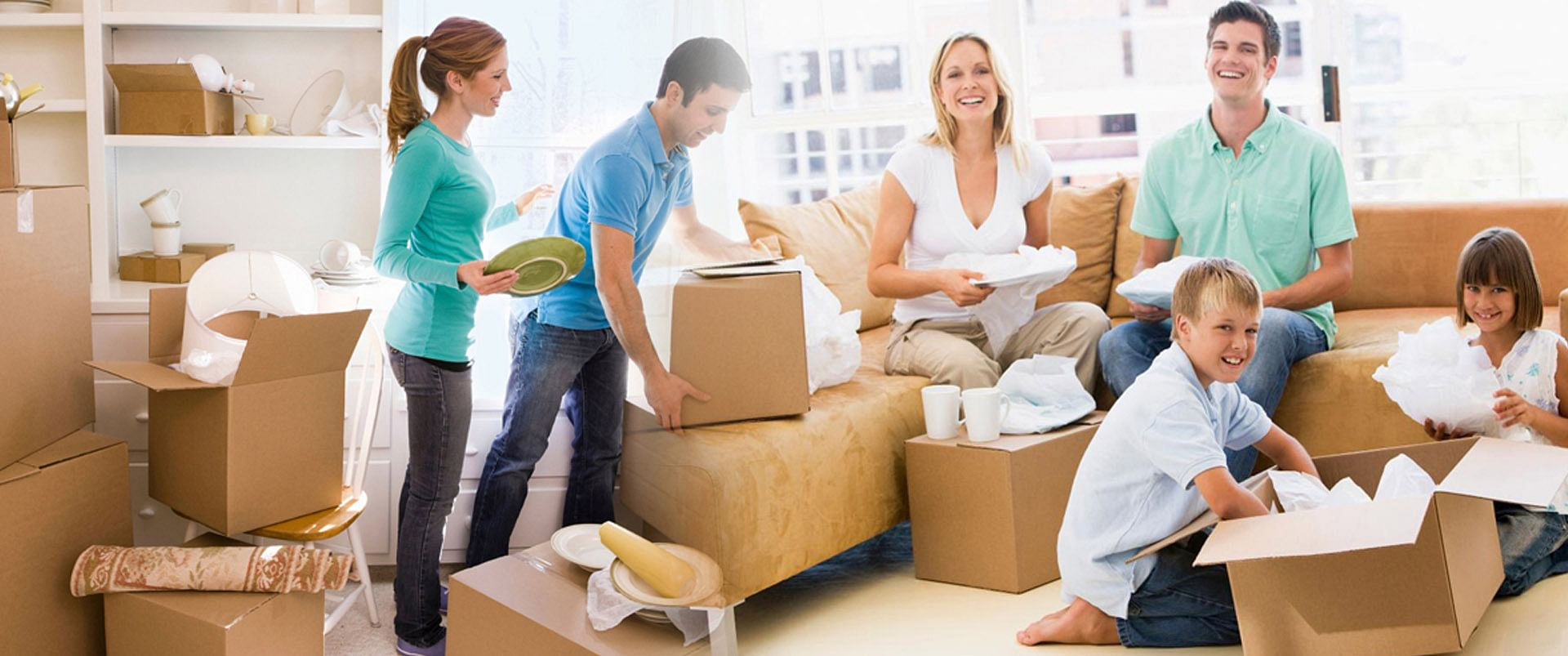 Move Plants Safely With Movers And Packers