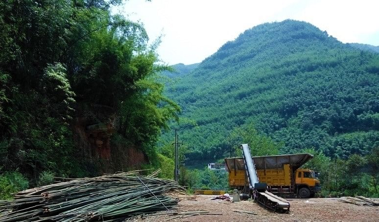 <i>Bamboo&nbsp; chip mill in Chishui, China</i>