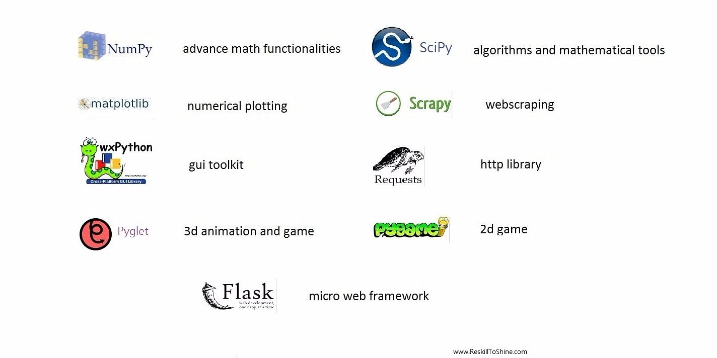 Know why learning Python and JavaScript is important
