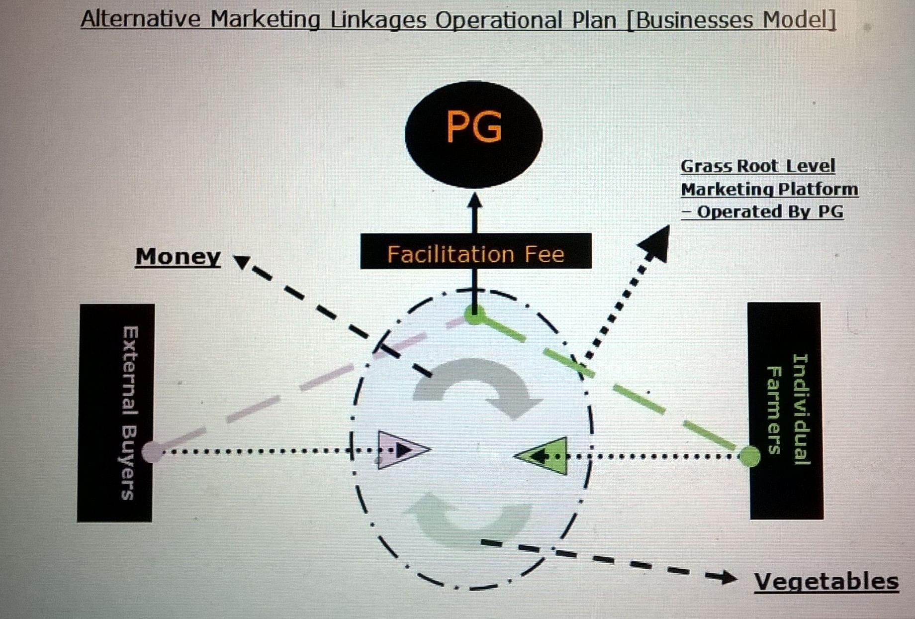 Alternative Business operational Model
