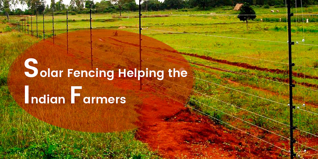 Solar Fencing Helping the Indian Farmers