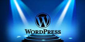 Hire Wordpress Developer India<br>