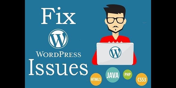 WordPress Issues