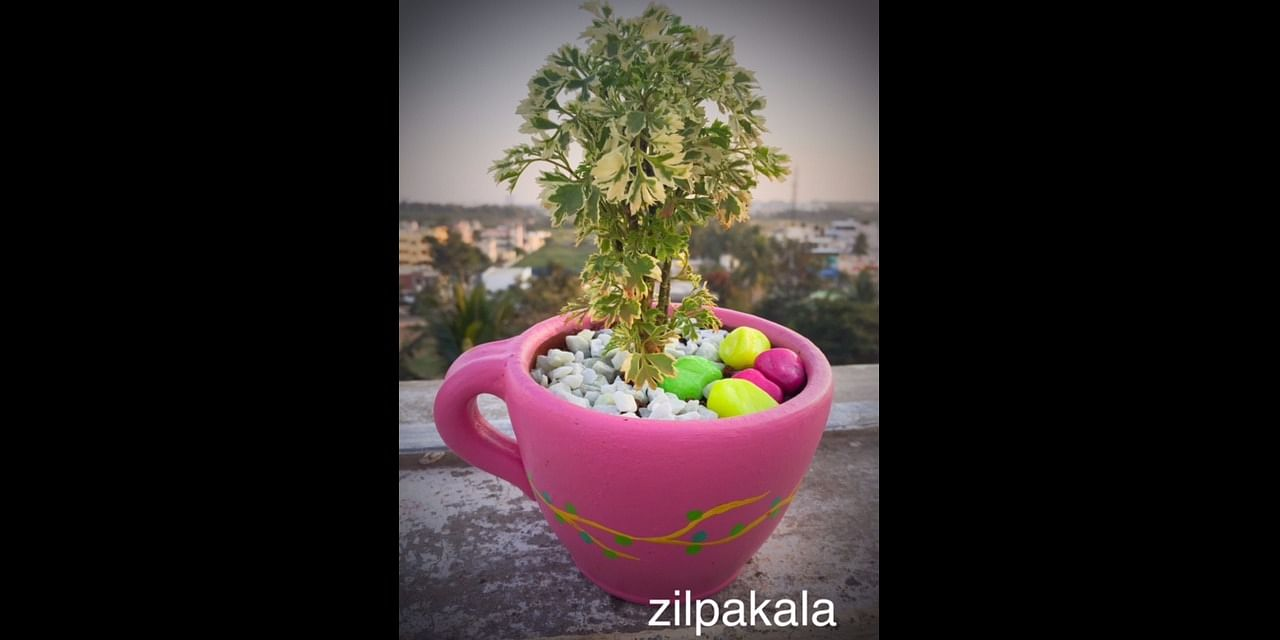 Cup planter