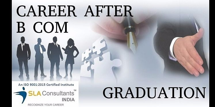 short term professional course suitable for Commerce from SLA Consultants India
