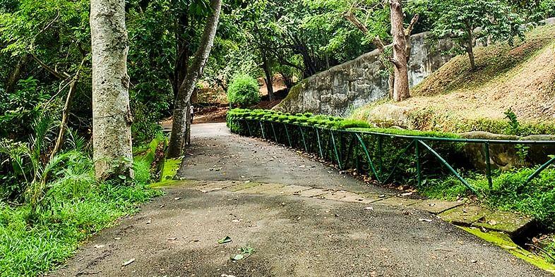 A stroll through the city zoo