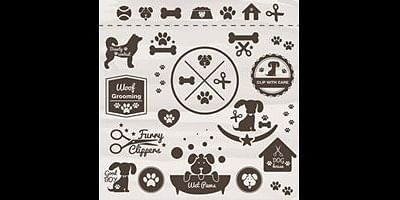 Puppy Party! Let your pets have fun