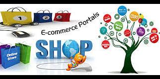 e commerce website development<br>
